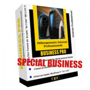 Hébergement Web BUSINESS PRO